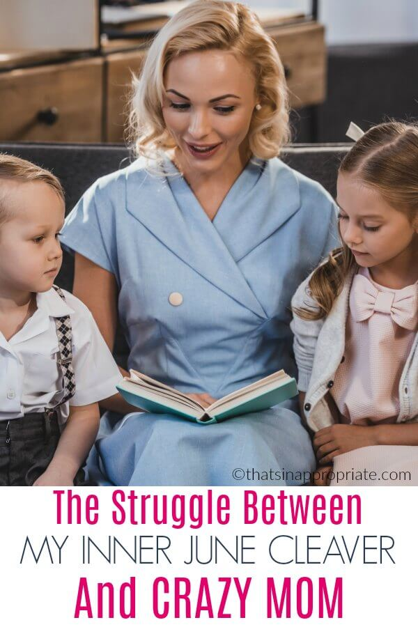 All moms struggle with keeping it together and losing it like a crazy mom. We all want the picture perfect picnic and kids in tow, but it doesn't always happen that way. This honest, real look at a day in the life of motherhood will have you laughing it's so funny. #parenting #momlife #funny #junecleaver #motherhood #parenthood